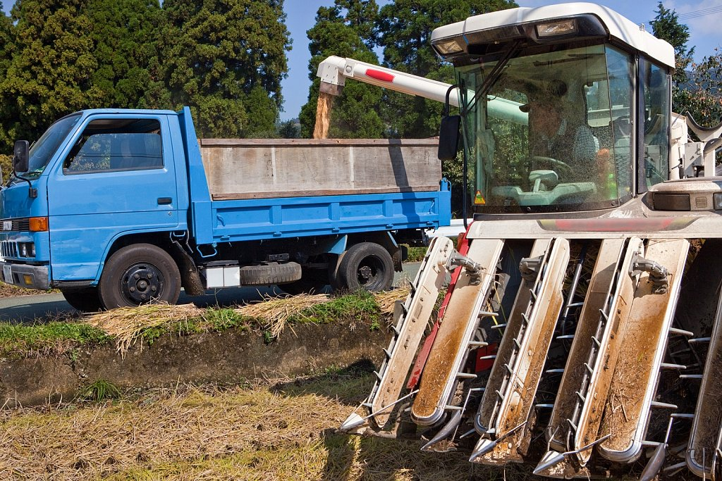 Combine transfers harvested rice to truck in Mt. Aso area, Kumamoto, Japan