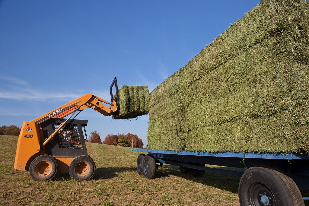 Loading 1000 lb. hay bales in Indiana