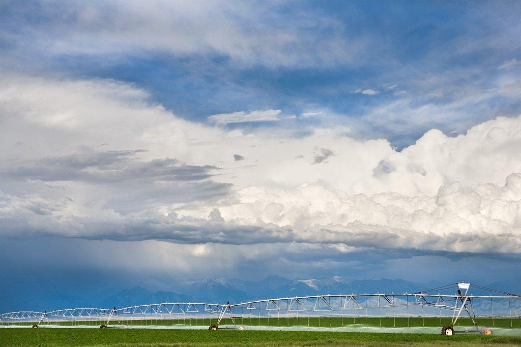 Storm and irrigating alfalfa CO